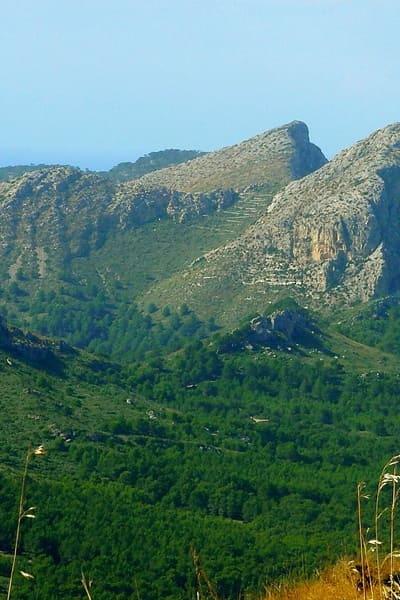 Agencia SEO Mallorca
